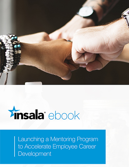 Launching a Mentoring Program to Accelerate Employee Career Development